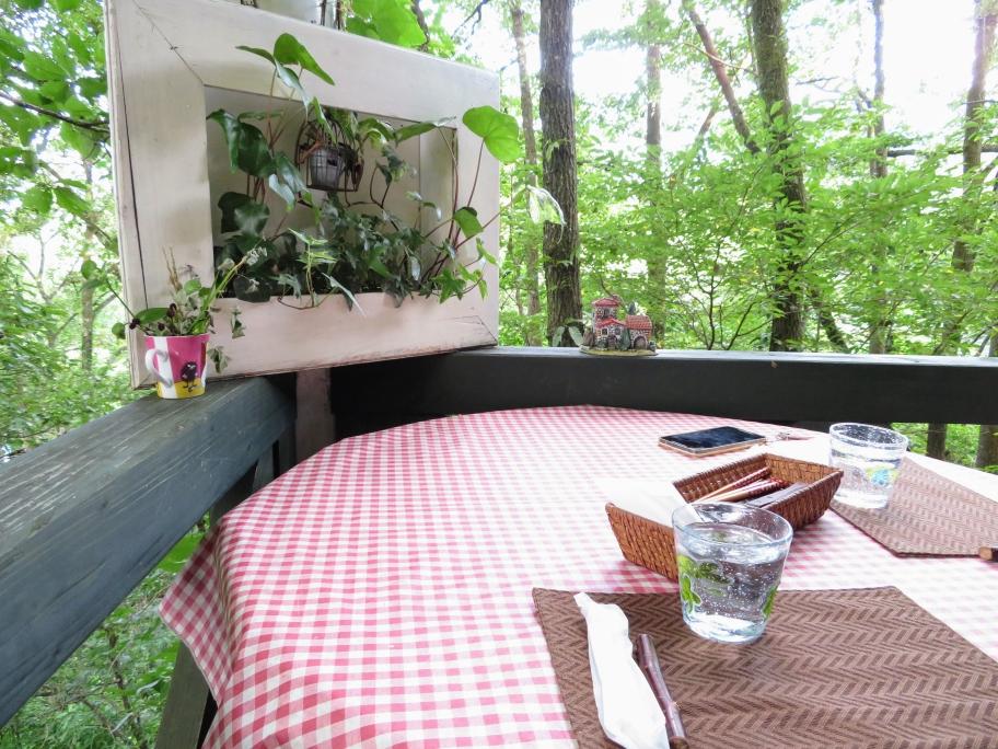 森のカフェテラス 緑の小箱さん