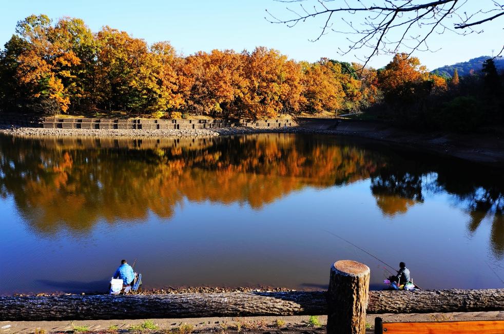 立岡自然公園 紅葉と釣り人
