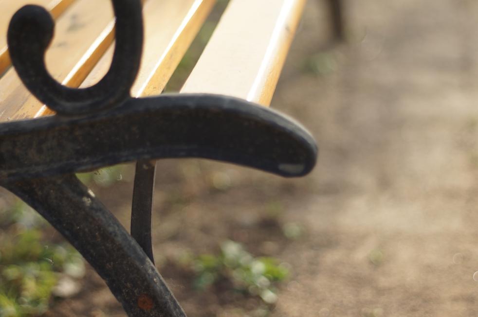 立岡自然公園のベンチ