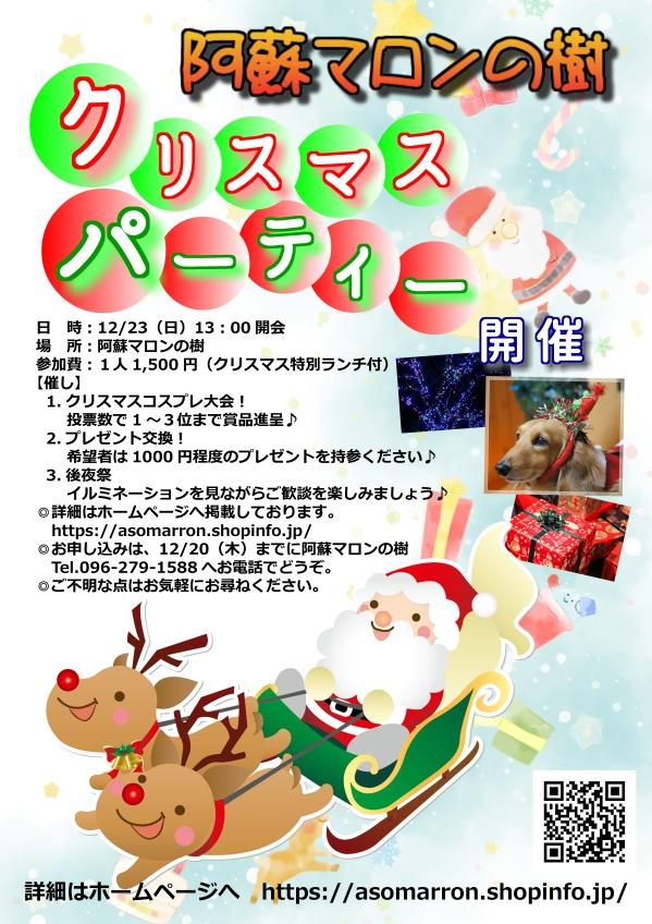 クリスマス1203_compressed.jpg