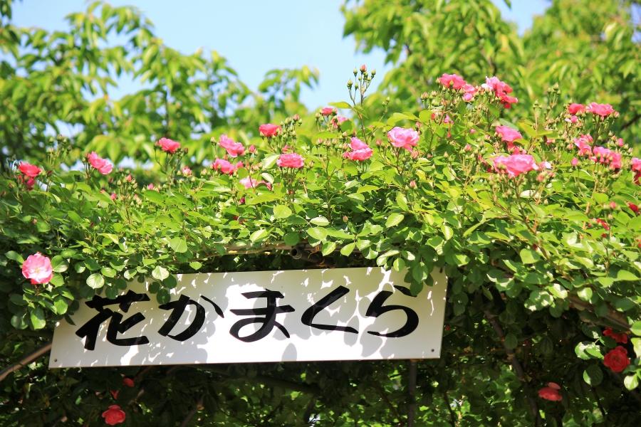 フードパル熊本 ローズガーデン